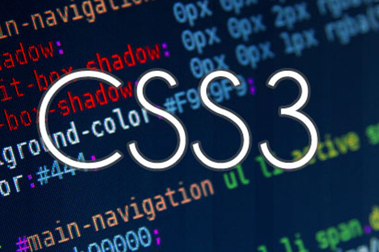 Top 7 CSS Tricks every beginner must use